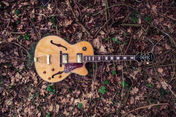 Type de guitare semi-acoustique étendu au sol