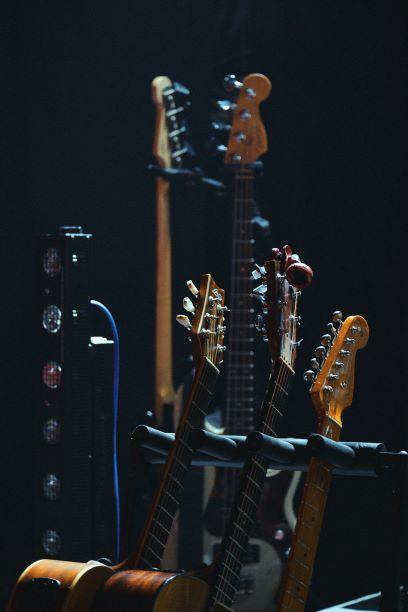 Différents types de guitares sur un porte guitare