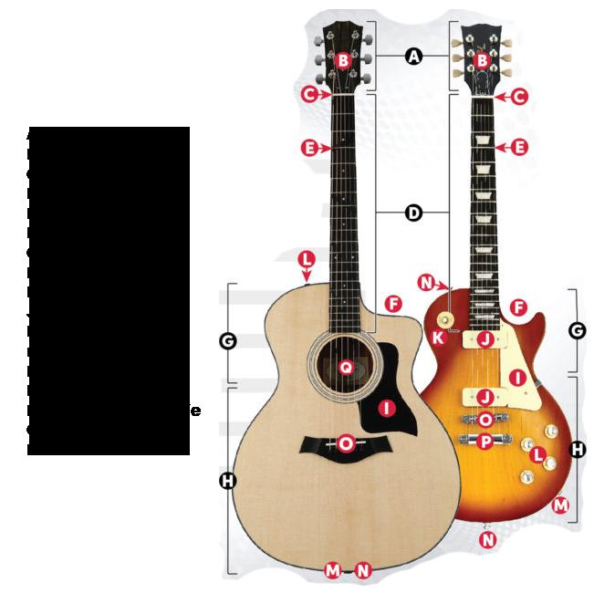 Les parties de la guitare